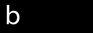 bigture logo web