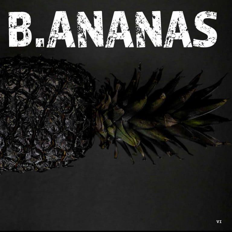 Handout - die Netzwerkkapitäne B.ANANAS