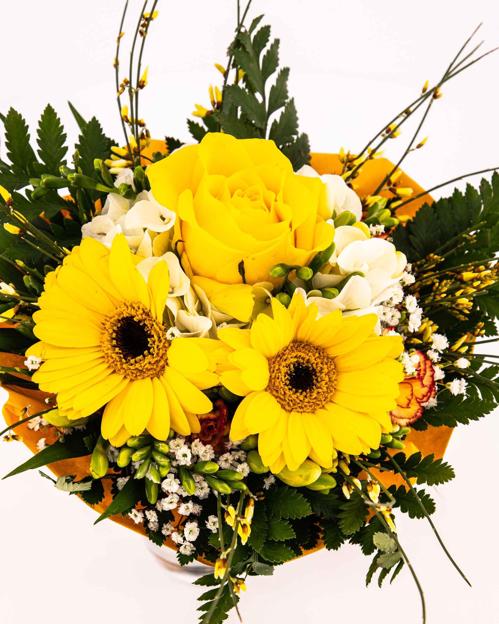 Die Netzwerkkapitäne - Blumen